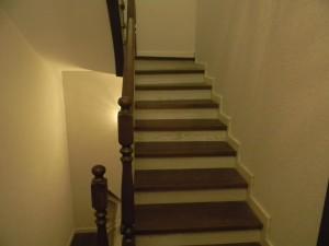 Танхауз лестницы, представленные в Репино